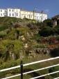 Ventnor Palisade Garden